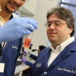 Pitt Vaccine Researcher Among First to Study Zika Virus Causing Birth Defects in Brazil