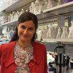 Society of Biological Psychiatry Honors Pitt Researcher