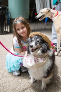 Therapy Dog Event 2