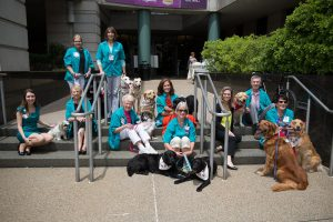 Hillman Cancer Center Honors Four-Legged Therapy Friends