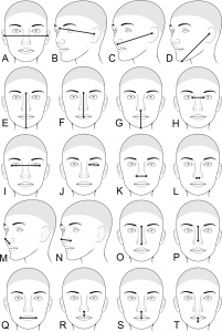 Pitt Researchers Study How Genes Influence Facial Appearance
