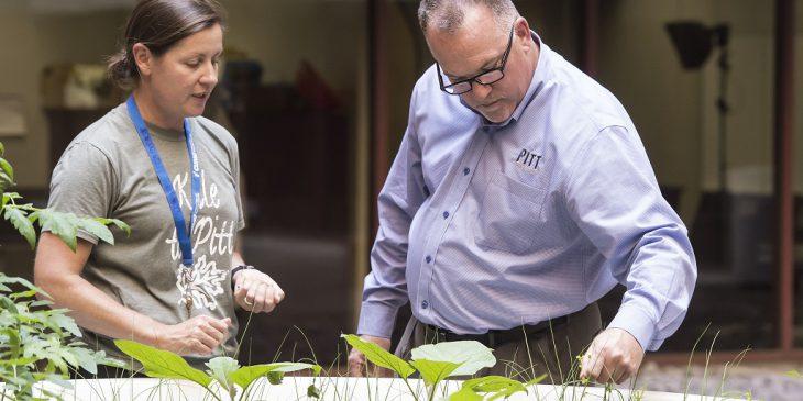 New Garden Fuels Pitt's Nutrition Program